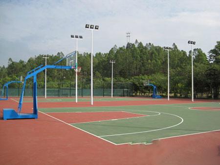 东莞市人民政府关于加快发展体育产业促进体育消费的实施意见